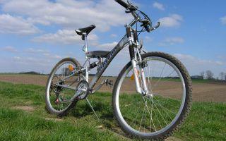 Польза езды на велосипеде для здоровья