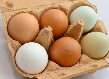 8 причин не боятся есть яйца каждый день