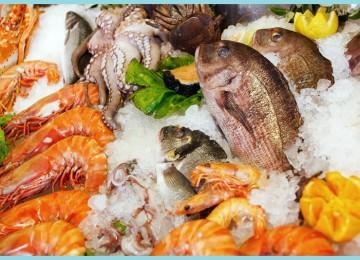 Польза морепродуктов для организма